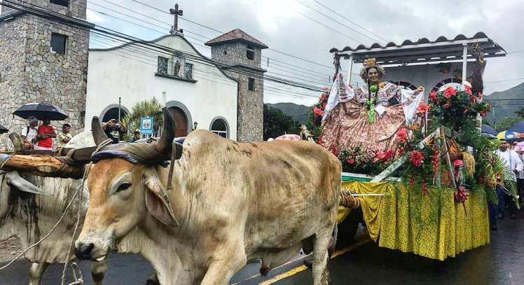 farm festival el valle